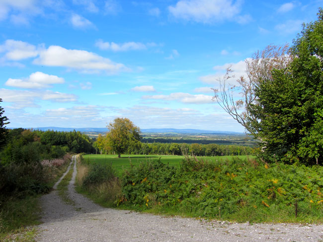 View From Ballagh Loop Walk