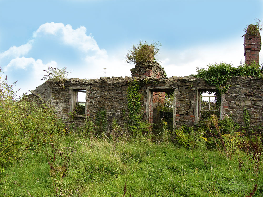 Ruin on the Ballagh, Durrow.