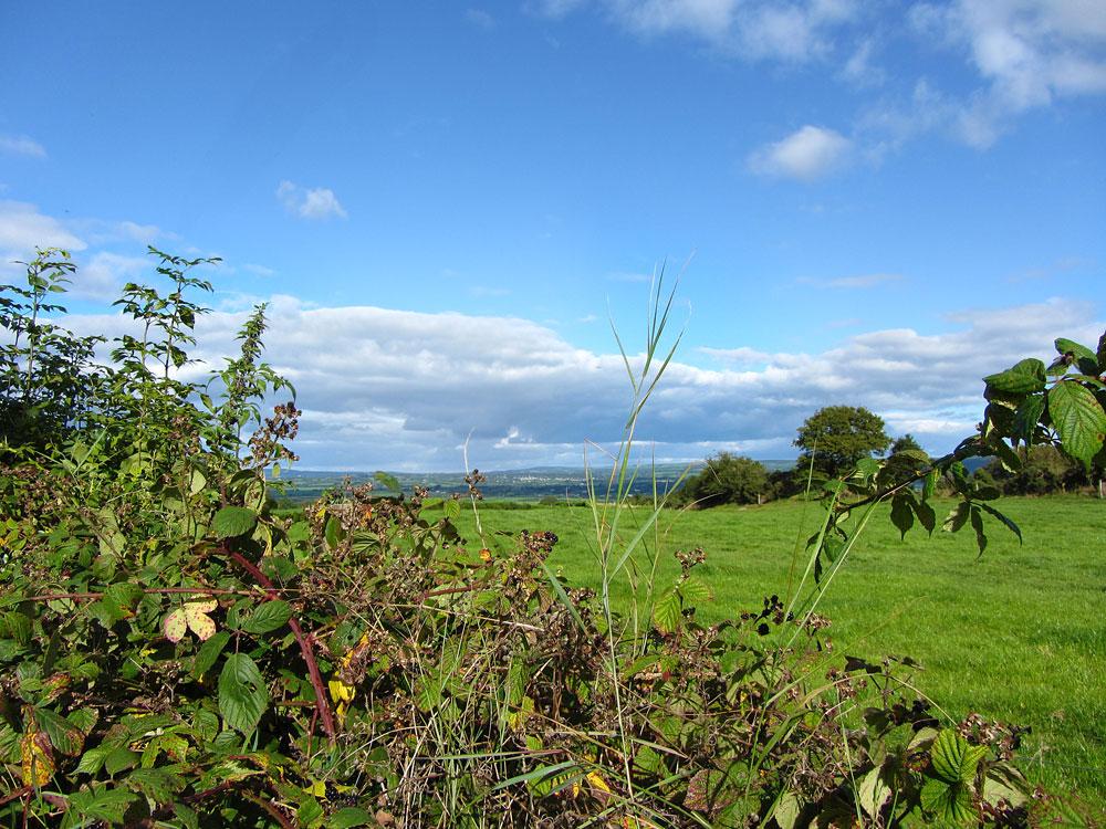 The Ballagh, Durrow, Co. Laois