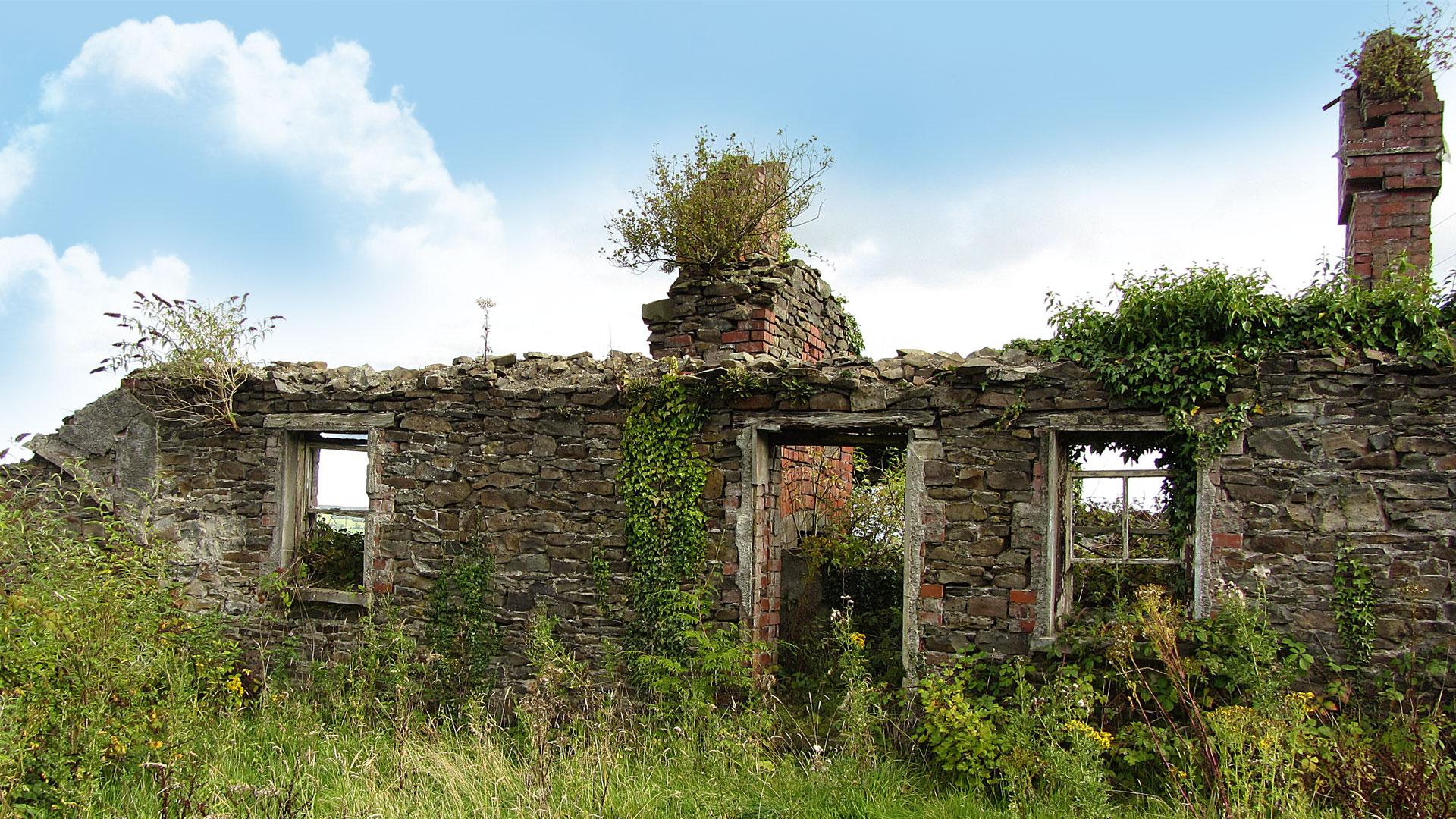 Views from The Ballagh, Durrow.