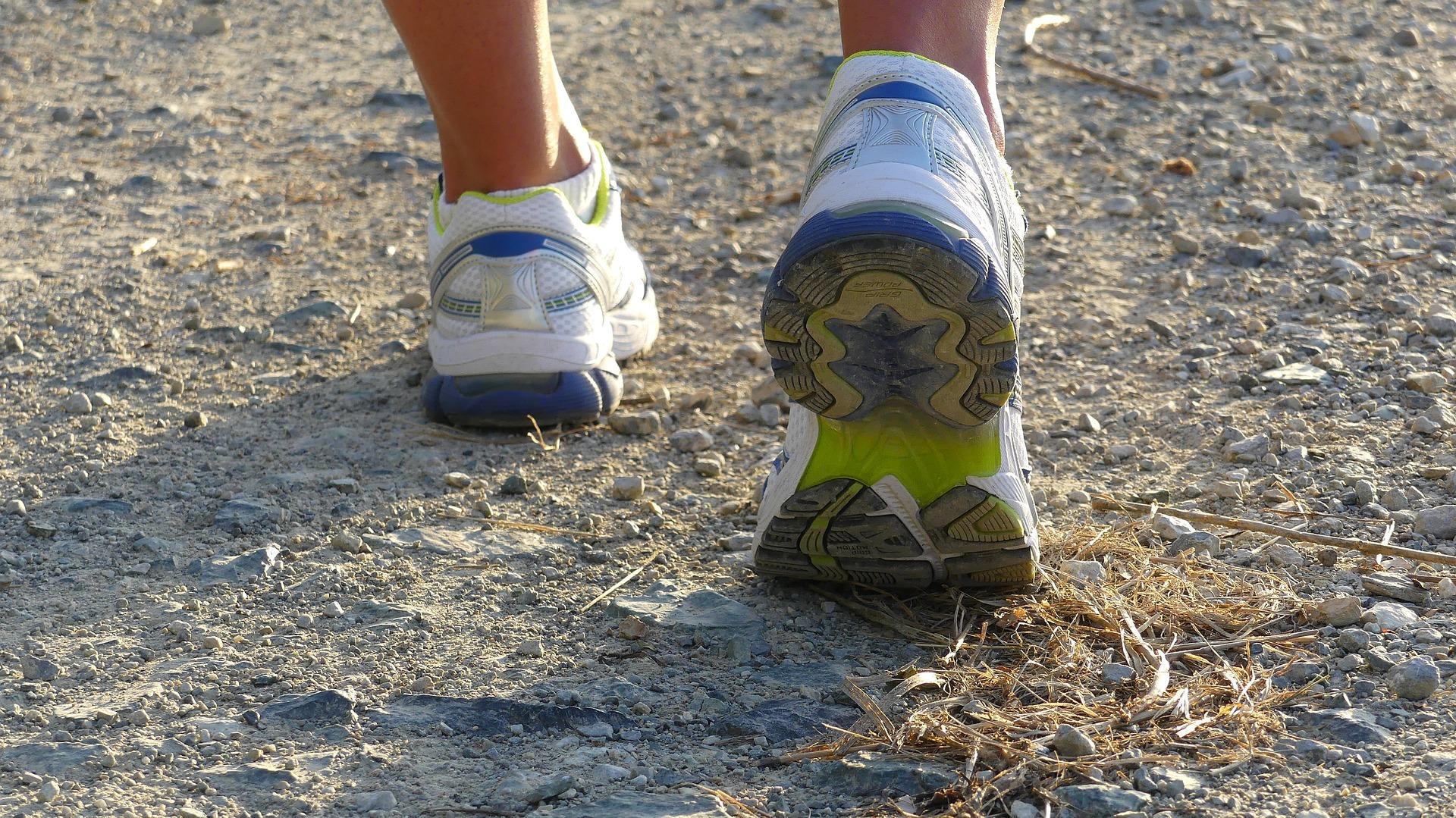 Knockatrina Wood – 5 KM Run / Walk
