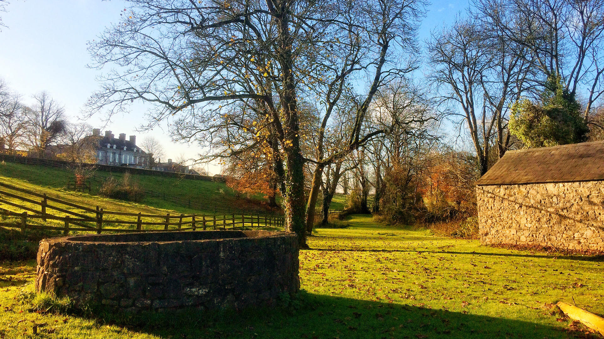 Castle Durrow – Autumn On The Leafy Loop