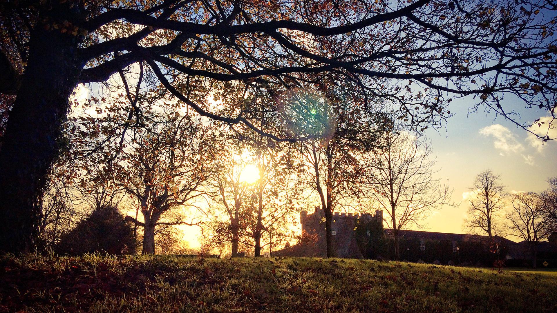 Castle Durrow Walk – November 16th 2017